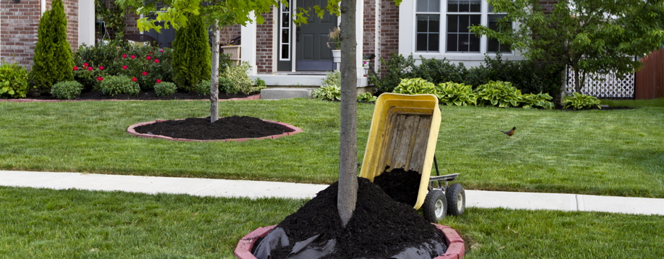Mulch More bulk landscaping materials delivery 6 days a week in